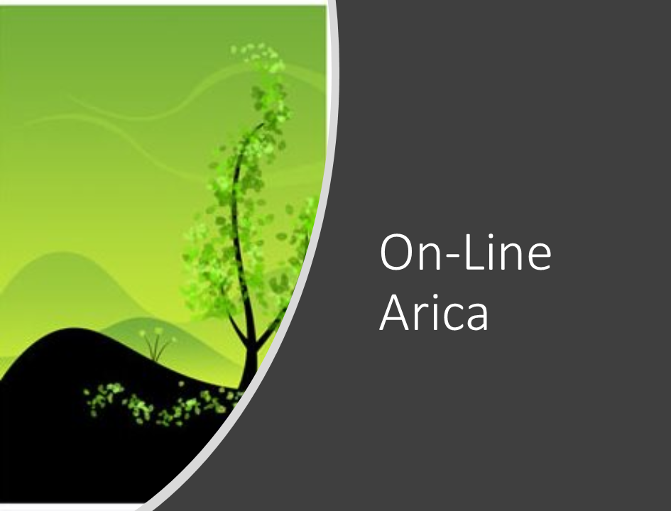 Profundización teórica On-Line Arica