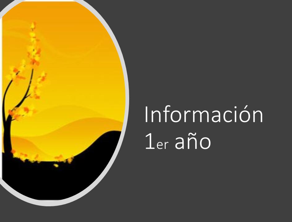 Información 1º año
